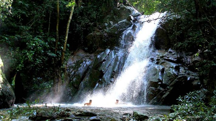 Trekking in the tropical forest
